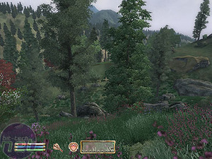 The Elder Scrolls IV: Oblivion Gameplay