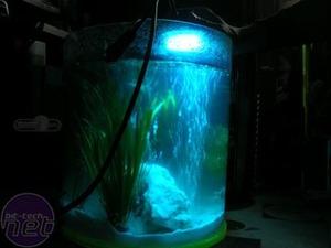 Mod of the Month - June 2007 Tikki Aquarium