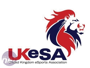 Does Professional Gaming Have a Future? UK and European organisations