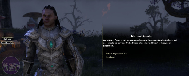 The Elder Scrolls Online Preview