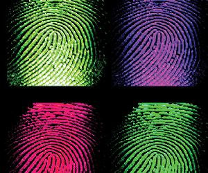 Biometric passports already cracked