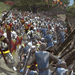 Medieval 2 demo released