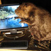 Eager beaver PC mod unveiled