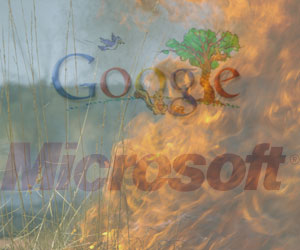 Google responds to Microsoft's Yahoo! takeover bid