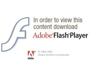 Adobe Flash flaw allows code execution