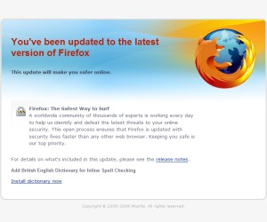 Bug mars Firefox 3.0 launch