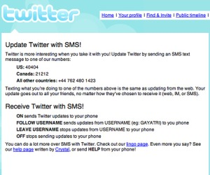 Twitter cans SMS service