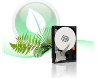 Western Digital introduces 2TB Caviar Green HDD