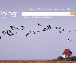 Microsoft launches Bing search engine