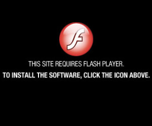 Adobe launches preview of Flash alternative