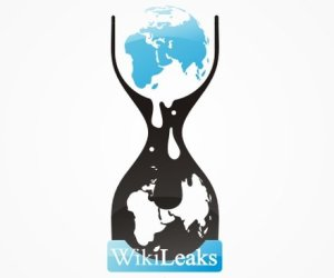 Ex-Wikileaks spokesman admits destroying files